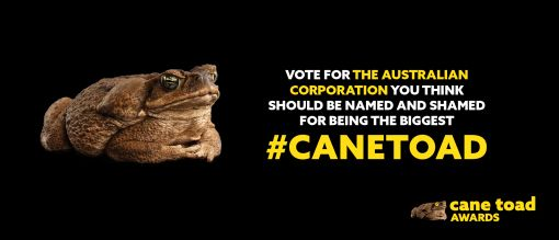 Corporate Cane Toad Award 2021: Rio Tinto and Mayur Resources receive Australia's most toxic award